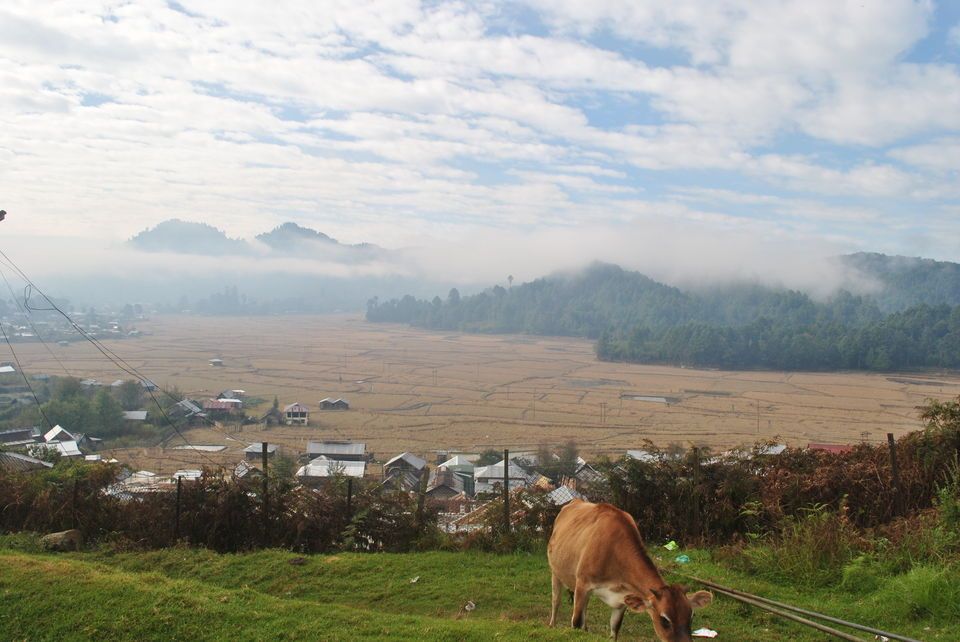 Discovering Ziro: On the Trail of the Apatanis