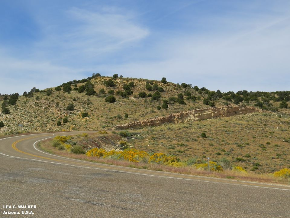 US Route 89 - The Ultimate Road Trip