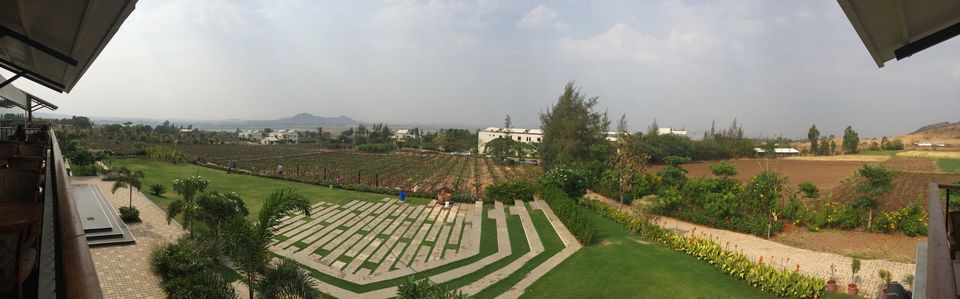 Nashik Vineyards - There is more than Sula!