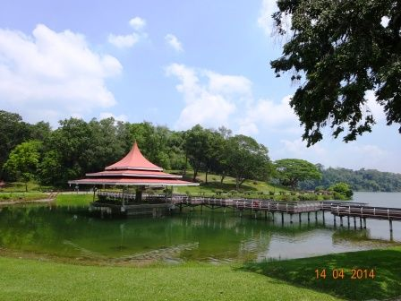 Photos of MacRitchie Reservoir Singapore 2/8 by Prahlad Raj
