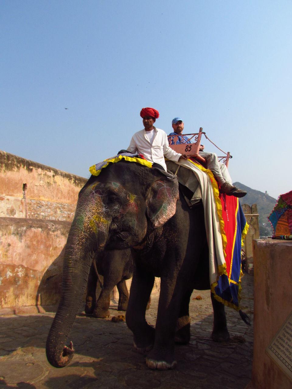 Photos of Elephant ride @ Amer Fort, Jaipur 4/24 by Prahlad Raj