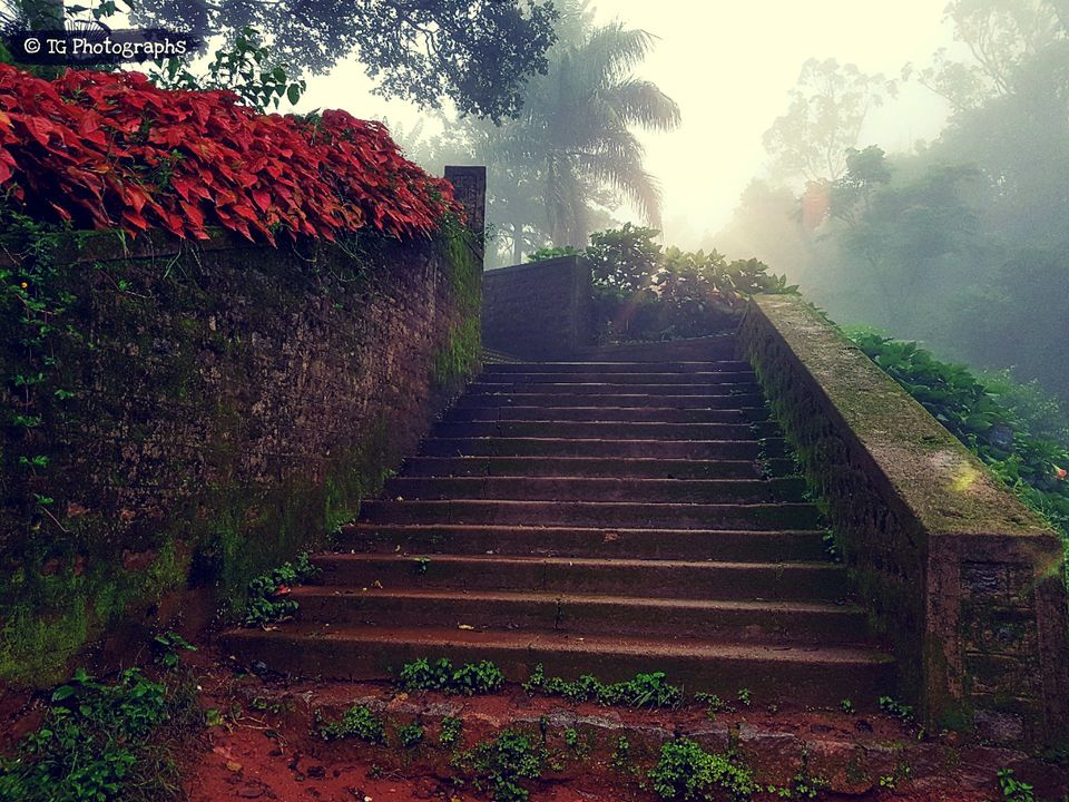 Photos of Exploring Coorg : A brief travelogue of my experience 1/1 by Tushar Gupta