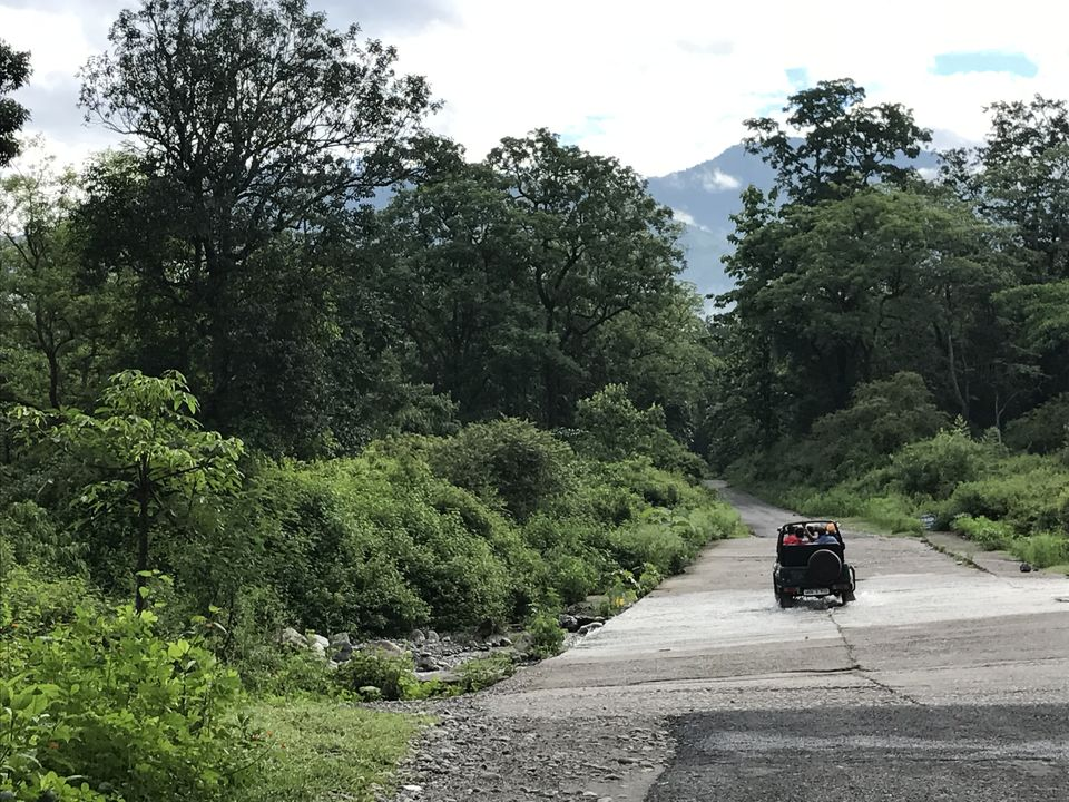 Photos of What to expect from Jim Corbett in off-season (July) 1/1 by Shashank Sinha