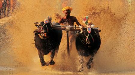 Photo of Karnataka in 7 Days: A Day-Wise Itinerary