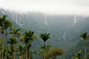 A Guide to Shillong, Meghalaya