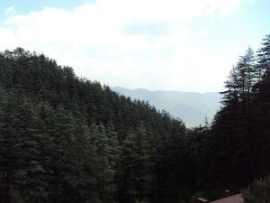 Shimla - The Queen of the Hills