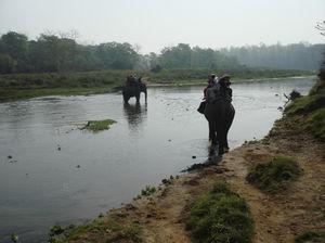 Chitwan 1/1 by Tripoto