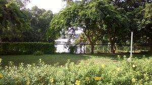 Beyond Temples – Bhubaneshwar