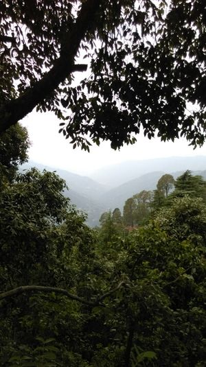 Beat the heat with a weekend trip to Garhwal