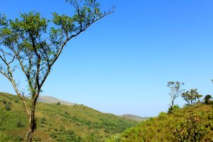 A Day Of Sheer Adventure: Kudremukh Trek