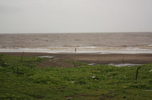 Bordi beach : The Weekend Getaway From Mumbai
