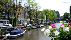 Graceful Amsterdam: So much more than what it is famous for