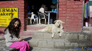 McLeodganj & Around:  A Relaxed Trip