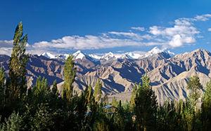 Leh Ladakh 1/338 by Tripoto