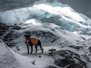 Explore Byron Glacier in Portage, Alaska
