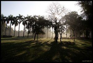 Lodi Gardens 1/4 by Tripoto