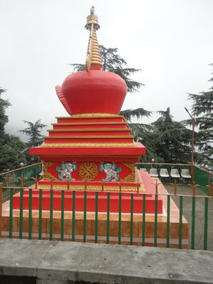 Tibetan Freedom Struggle in McLeod Ganj