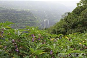 Trek to Rajmachi fort with a backpack: Wishtrack's weekend getaway from Mumbai