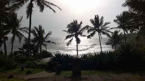 In Kerela... all you need is.... to be swept away!