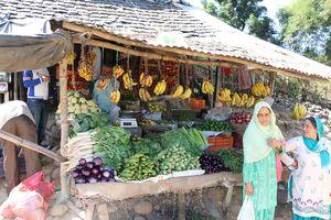 Exploring Southern branch of Greater Himalayas (Dharamshala, Mcleodganj & Pilgrimages).
