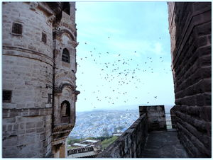 Desert Cruise: Jodhpur & Jaisalmer