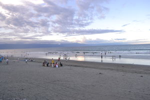 Baler   For the Love of Surfing
