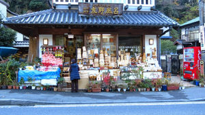 Solo traveling in Japan