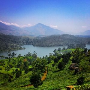 5 Must Do's on your trip to KERALA!