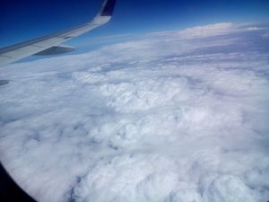 My first flight trip with Vistara! Superb Experience