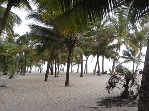 Ethereal Kerala- Backwaters & Beaches