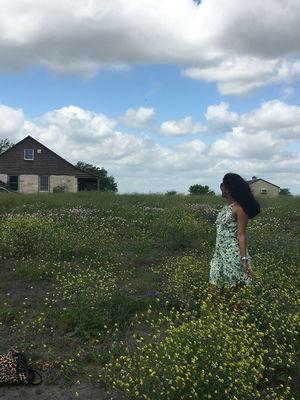 An enchanting meadow- Bluebonnet Trail, Chappell Hill