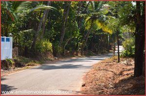 Goa: Galjibaga beach
