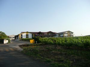 Sula Vineyards 1/43 by Tripoto