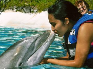 Sea Life Park Hawaii 1/8 by Tripoto