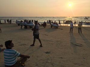A Bottle Of Beer And Some Sea Food-Goa Here