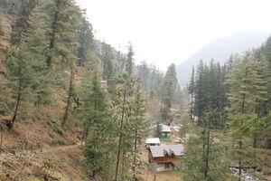 Weekend getaway: Shoja, Himachal Pradesh