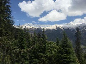 A roadtrip to Shimla and Manali