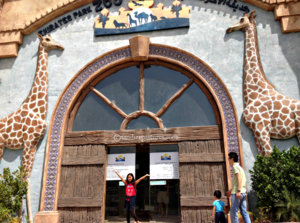 Watch Giraffes, zebras, ostriches and other animals from your Hotel room in this luxury hotel