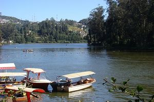 A Gem just 6 hr drive away from Bengaluru : Ooty