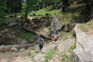 Hampta Pass trek: Paradise on earth