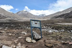 A Love Affair with Nature at Yumthang Valley, Sikkim