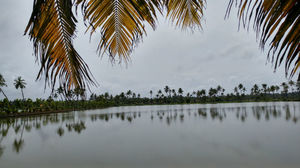 This Backwater Village Just 10km From Kochi Is Slowly Becoming Kerala's Top Tourist Destination