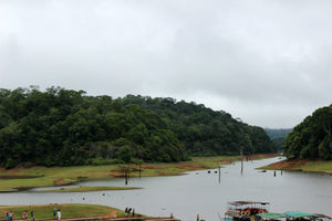 What To See And Explore In Thekkady