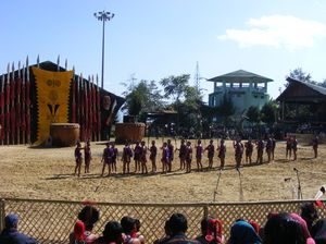 Nagaland's Hornbill Festival, I Was Mesmerized By The North Eastern Culture