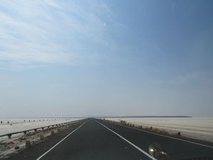 Welcome to the Harappan metropolis