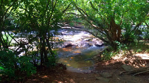 Exploring the untouched Paniyeli Poru at Kerala - God's Own Country