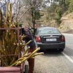 Shimla to Dharamshala: The drive as the destination