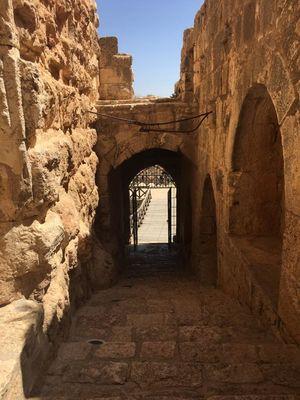 Ajloun Castle 1/1 by Tripoto