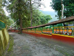 Enchey Monastery 1/7 by Tripoto