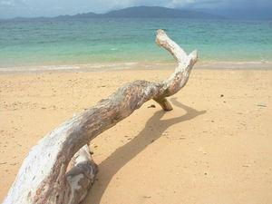 Short Retreat On The Coast: Cairns & Hobart